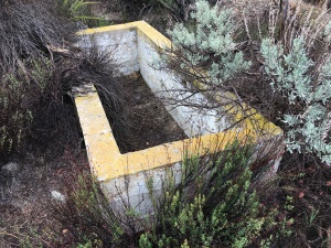 old cattle trough 1.2 miles down Alkali Wash