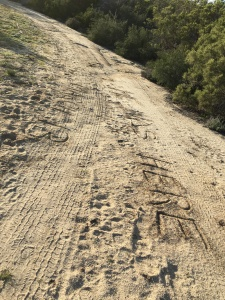 writing in the sand, as I tried to communicate with RivCo Sheriff deputies in a helicopter