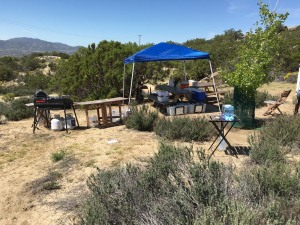 set up small tent over main picnic table