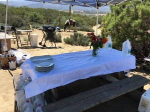 table set up, with Gracie in the backgroun