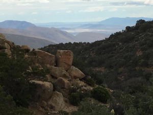 PCT mile 141, looking southeast into Borrego Valley