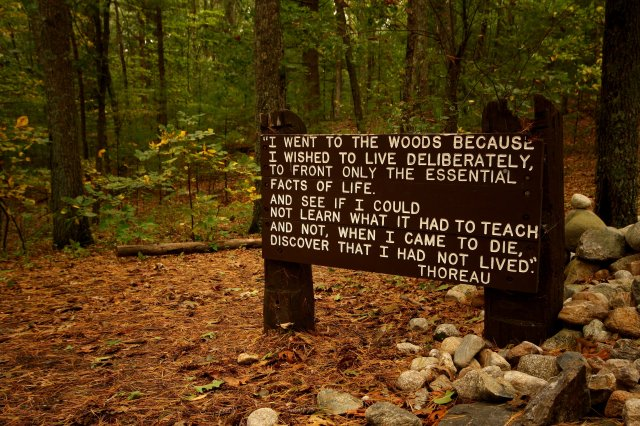 thoreaus_quote_near_his_cabin_site_walden_pond
